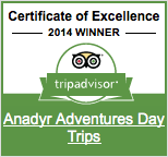 trip_advisor_daytrips